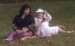 Polyester picnic